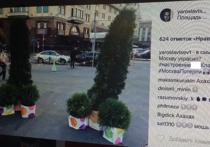 Хвойные пенисы украсили Москву вслед за розовыми пингвинами